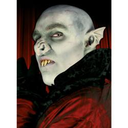 Öron - Vampyr