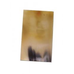 Hornplatta ca 12 x 7 cm