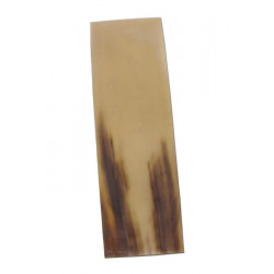 Hornplatta ca 15 x 5 cm