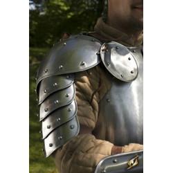 Axelplåtar Warrior